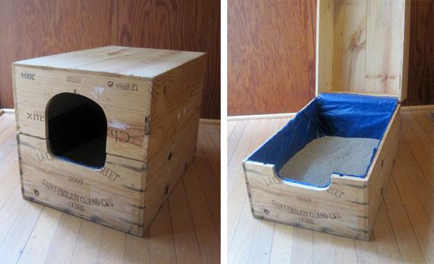 Как сделать лоток для котёнка