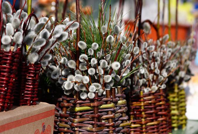 Народные традиции, приметы и обычаи на вербное воскресенье