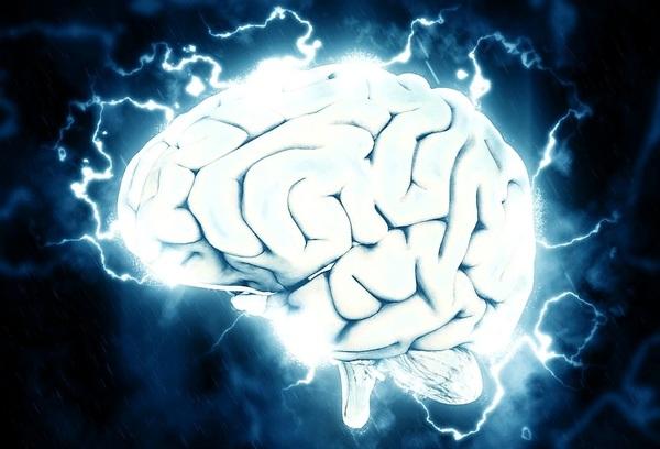 Ученые выяснили, что поможет омолодить мозг