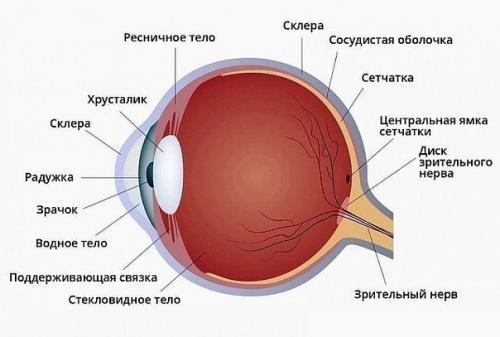 Зрение без операции возвращается!