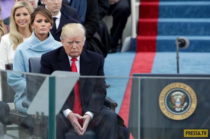 Смешные и позитивные фотографии первых ста дней Трампа
