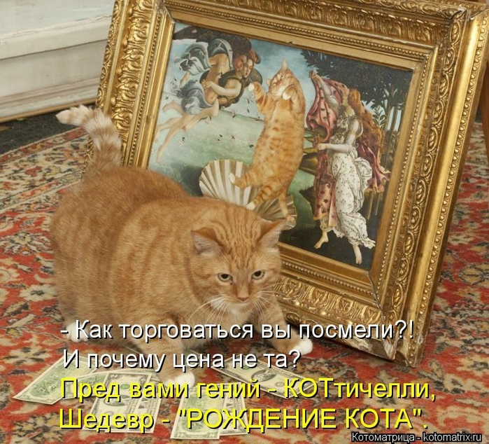 kotomatritsa_z (700x634, 399Kb)