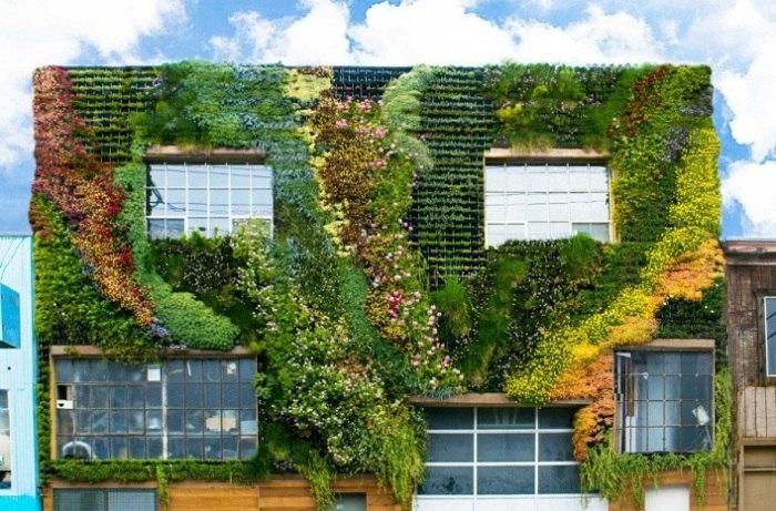 Вертикальный сад - зеленый островок среди серых бетонных «коробок»