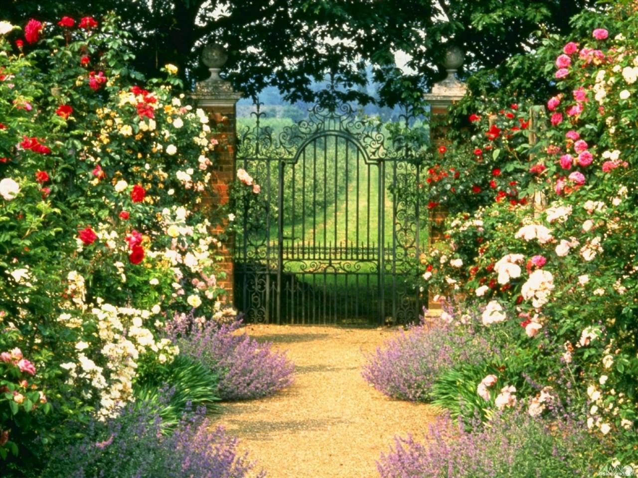 5 причин,чтобы провести отпуск в собственном саду на своей даче