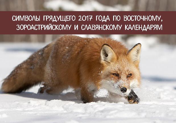 Символы грядущего 2017 года по Восточному, зороастрийскому и славянскому календарям
