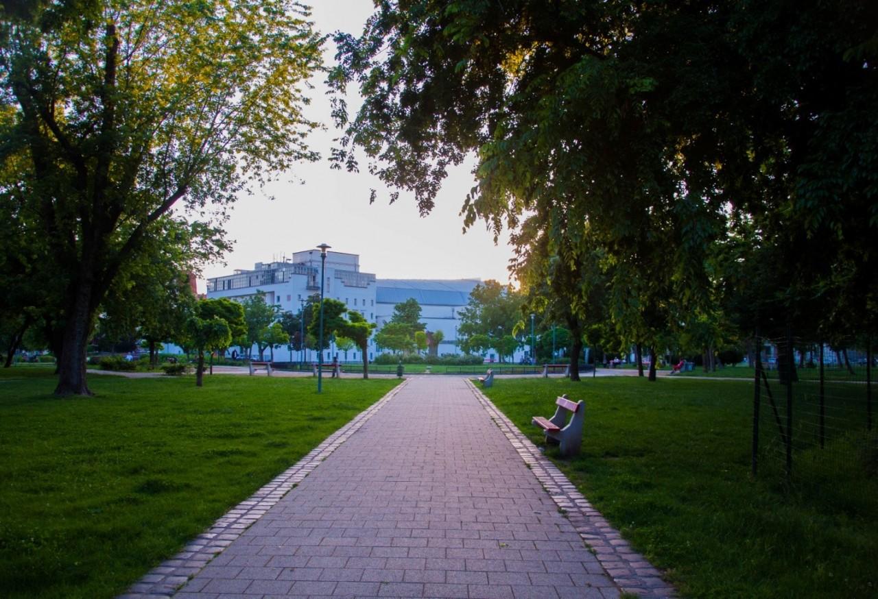 Парк в Будапеште