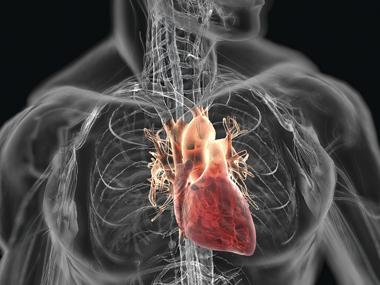 Лечение болезни сердца успешно при ранней диагностике