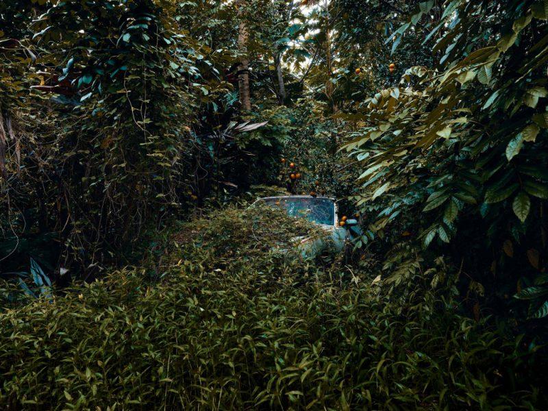 Брошенные тачки в гавайских джунглях: фотопроект Томаса Строгальски