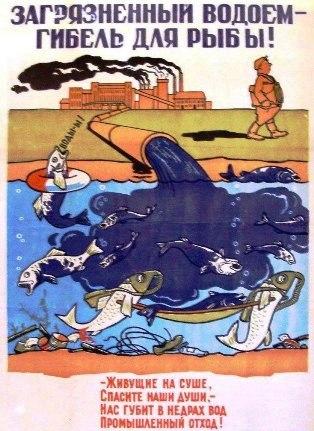 Помогите не допустить постройку целлюлозного завода на Рыбинском водохранилище!