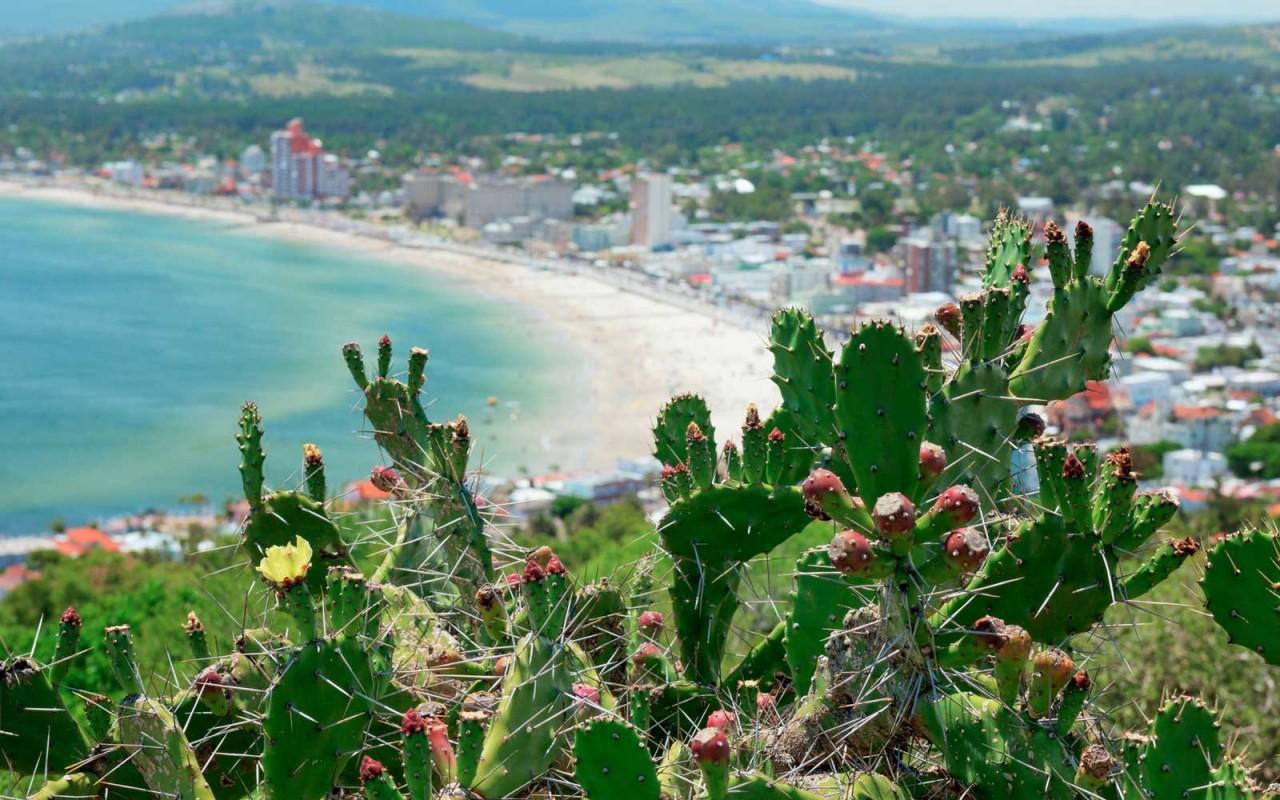 Десятка туристических направлений, которые становятся все более популярными