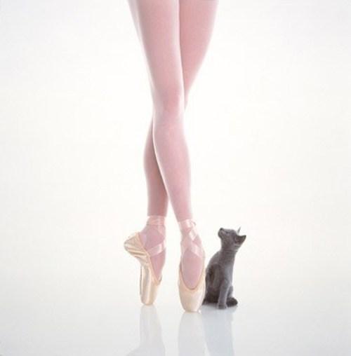Правда о ножках балерин. Мифы, реальность и фотографии.