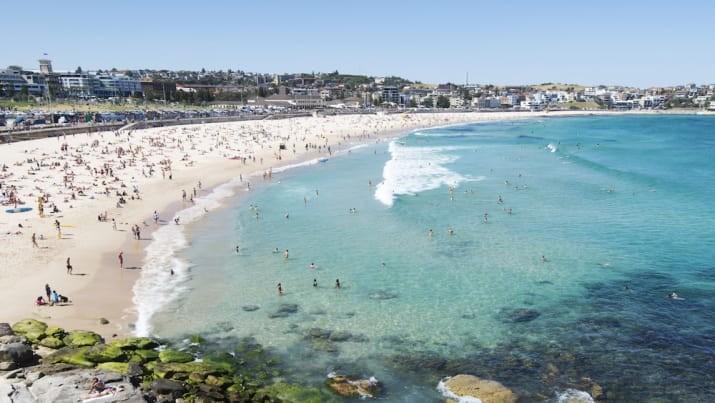 Самый популярный пляж в Instagram - Бонди-бич, Сидней, Новый Южный Уэльс австралия, доказательство, животные, мир, природа, туризм, фотография