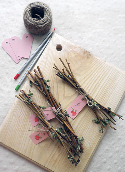 Как заварить вишневые ветки и от чего они лечат