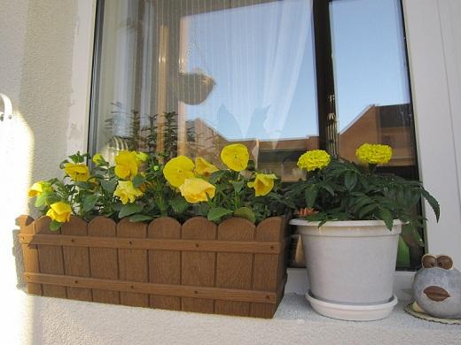 Украсить балкон цветами: советы по обустройству квартирного .