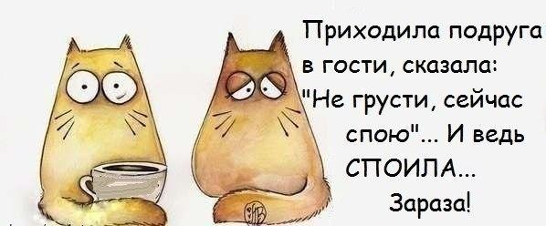 1385950351_frazochk-i-21 (598x248, 76Kb)