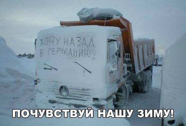 Жестокость нашей зимы