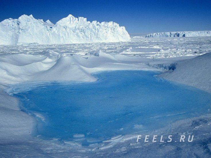 Антарктика, южная полярная область Земли Антарктика, интересное, материк