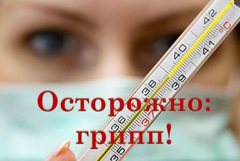 Эпидемия гриппа. Обращение Комаровского к народу