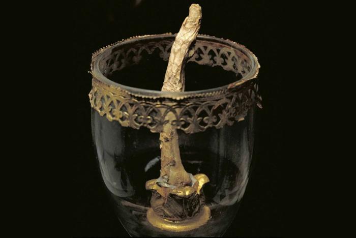 Найденный в деревянном футляре палец Галилея.