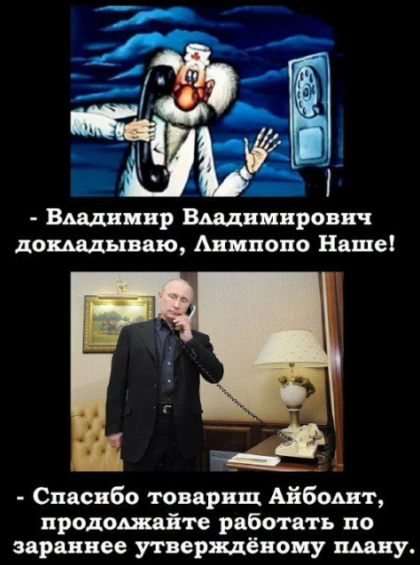 В россии демократический режим так как