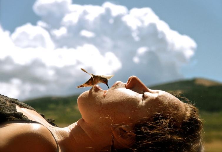 Фоторепортаж—так близко колибри вы ещё не видели