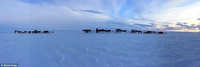 Жизнь на краю света Как живет сибирское племя ненцы в условиях лютого холод