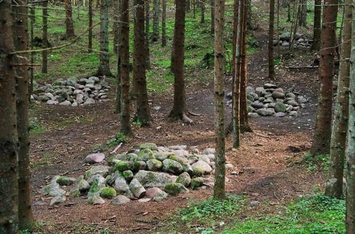 Тайны Покайнского леса