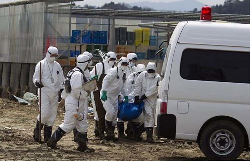 Поиски выживших зона отчуждения, радиоактивная зона, фото, фукусима, япония