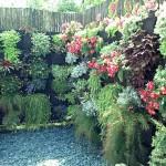Красивые дачи : 35 фото заборов с цветами