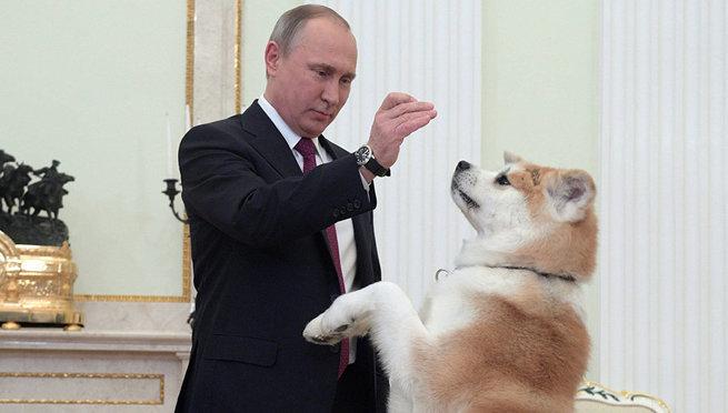 Украина. Психозы недели. «Ирония судьбы», вечный Берия и желтая собака Путина