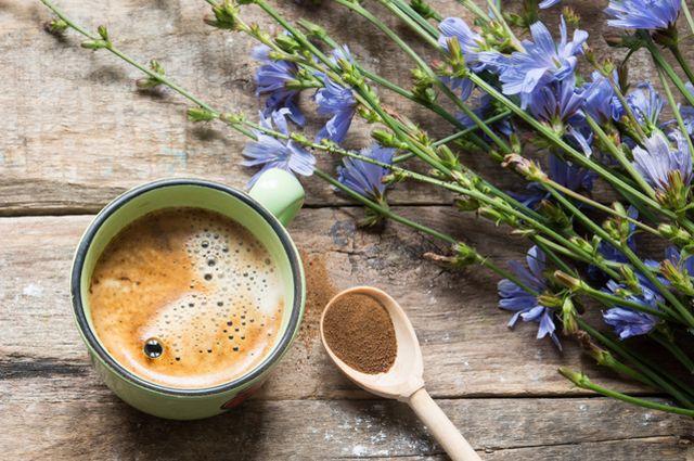 Как приготовить бодрящий напиток из цикория?