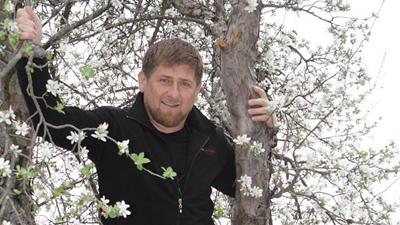 Кадыров удалит Instagram из-за осуждающих комментариев