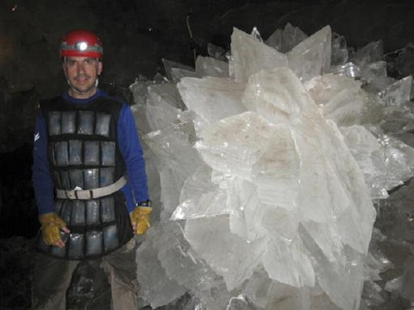 Найдена супержизнь возрастом 50 000 лет