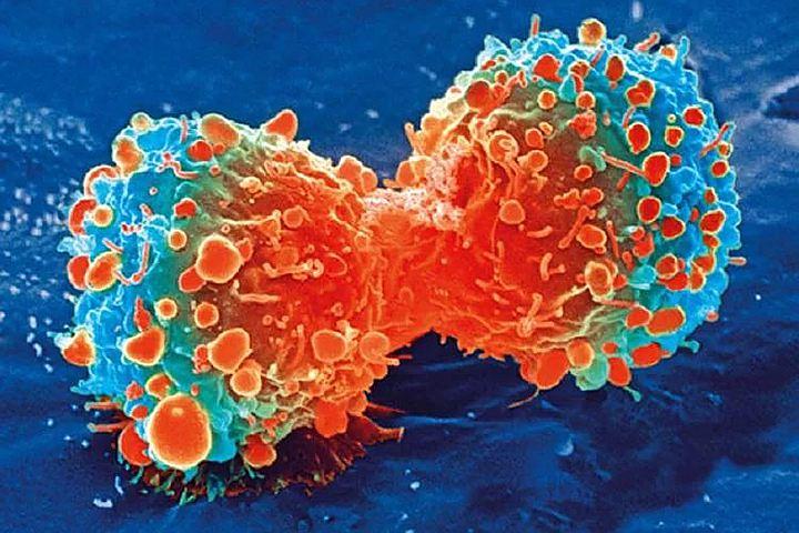 Ученые из Санкт-Петербурга создали нанокристаллы для борьбы с раком