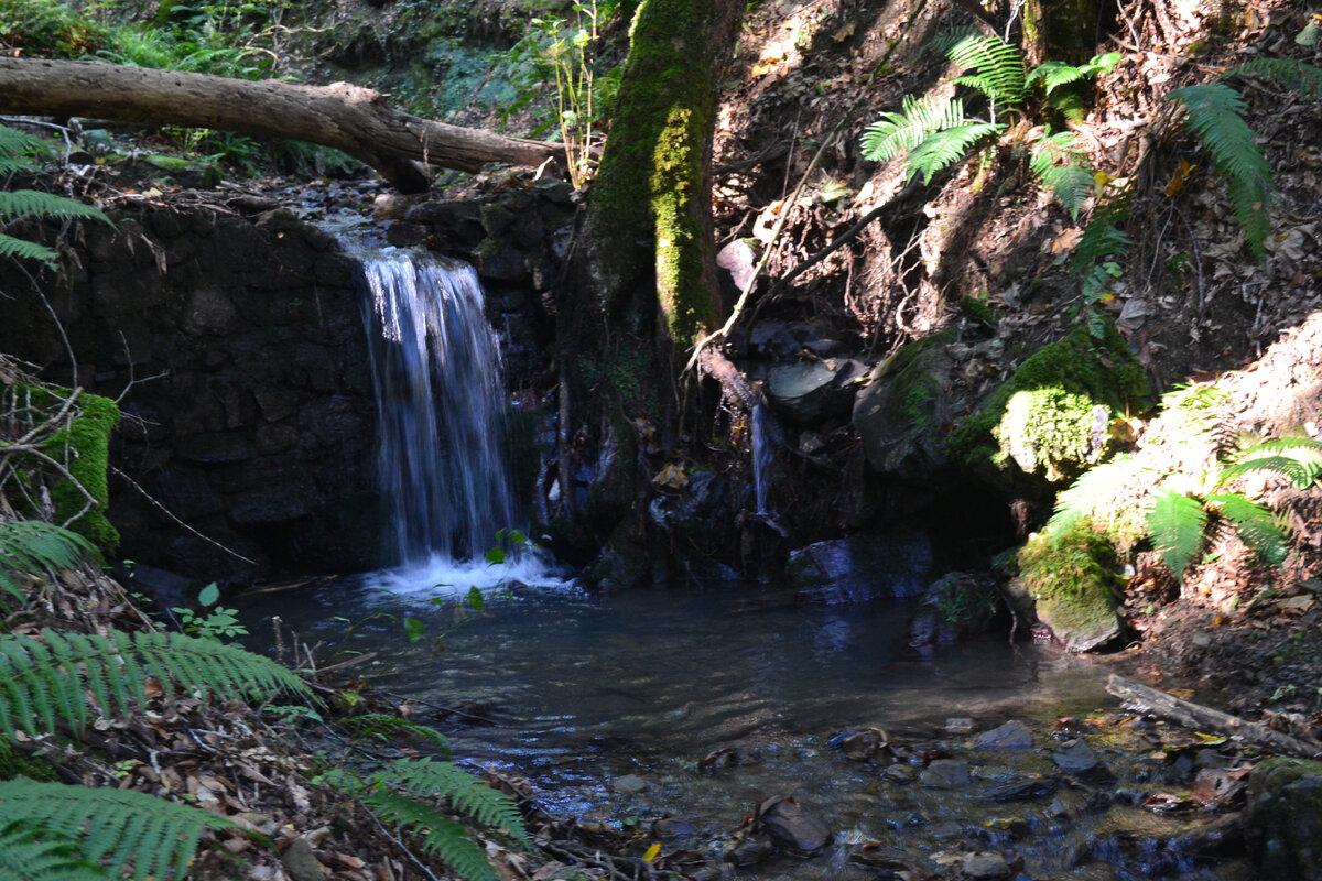 Водопады выше по течению ручья. Листайте галерею!