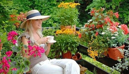 Цветы на балконе. Какие цветы на балконе посадить 69