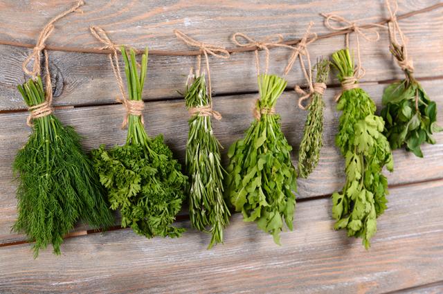 травы, зелень