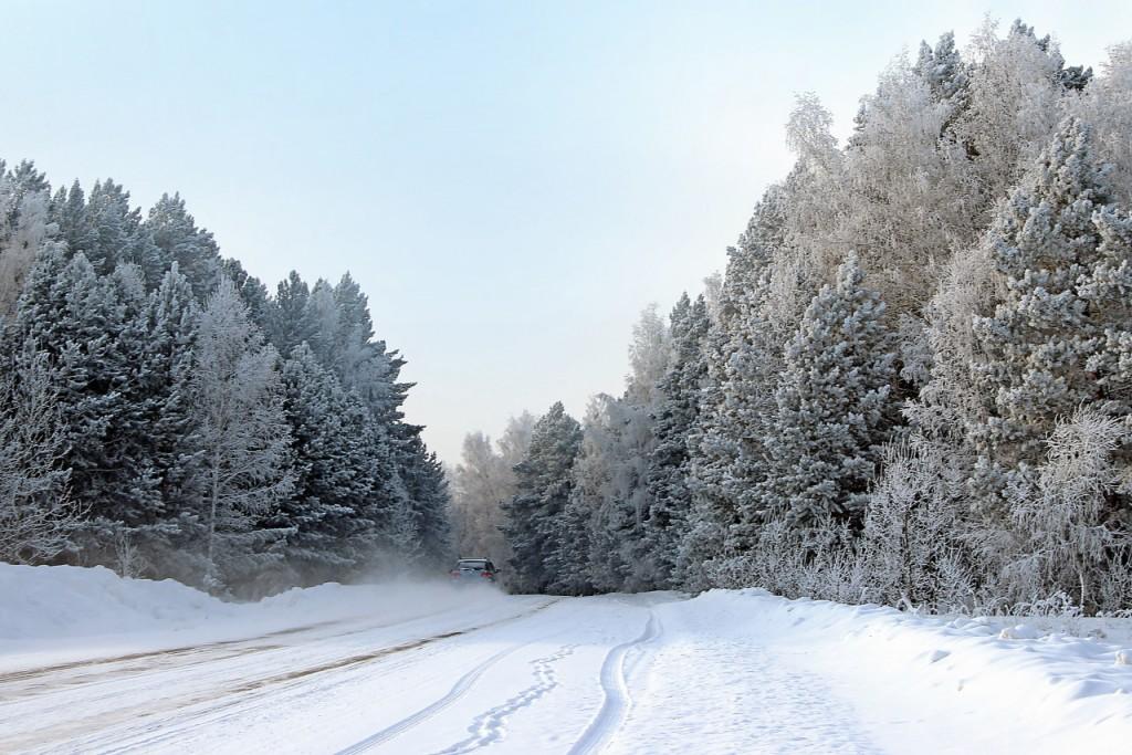 Зимняя дорога