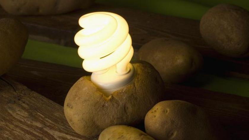 Как картофель поможет сэкономить деньги и освещать комнату в течение месяца?