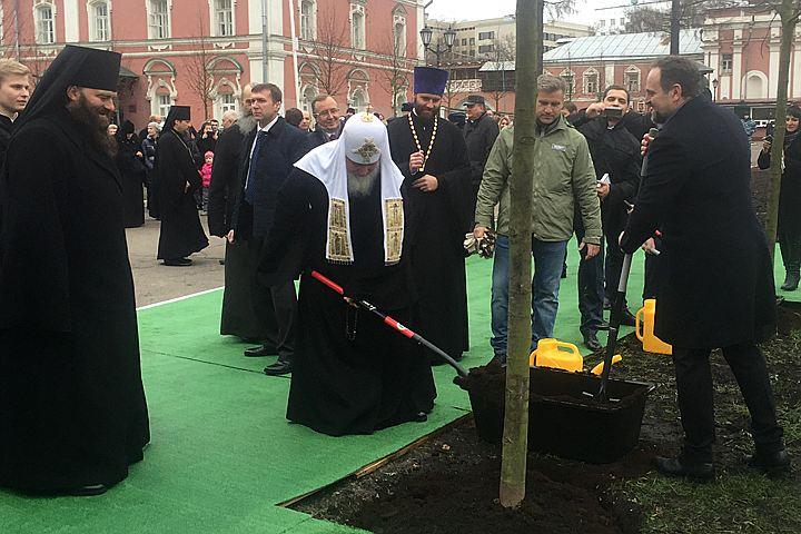 Исторический субботник: Патриарх посадил липовую аллею в Донском монастыре