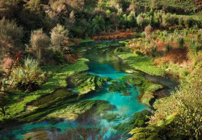 Великолепный пейзаж Новой Зеландии.