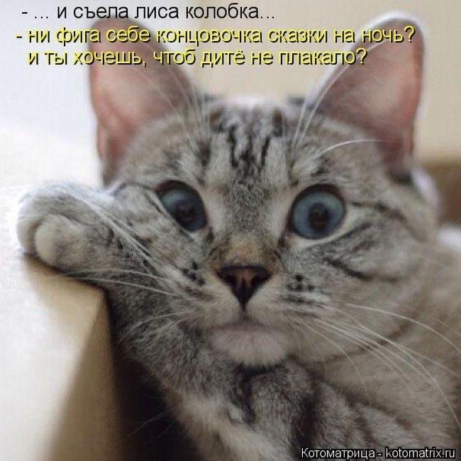 http://mtdata.ru/u4/photoE8A9/20541872690-0/original.jpg