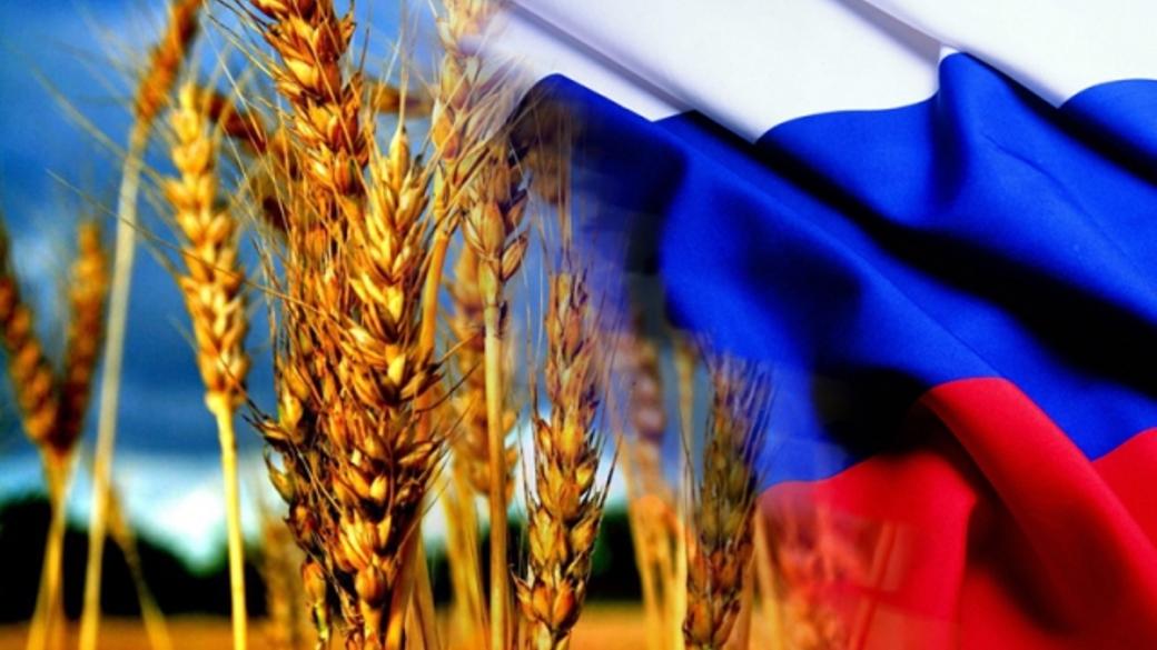 Россия обогнала США и вышла на первое место в мире по экспорту пшеницы