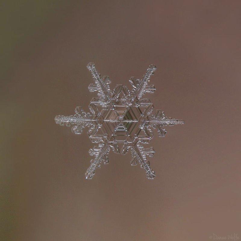 Результат - восхитительная снежинка интересное, макро, макро-съемка, полезное, снежинка, советы, фото, фотография
