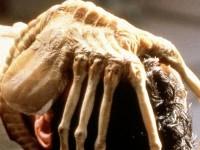 Каша в голове. Какие смертоносные паразиты скрываются в мозге человека?