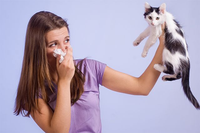 Как изменилось лечение бронхиальной астмы