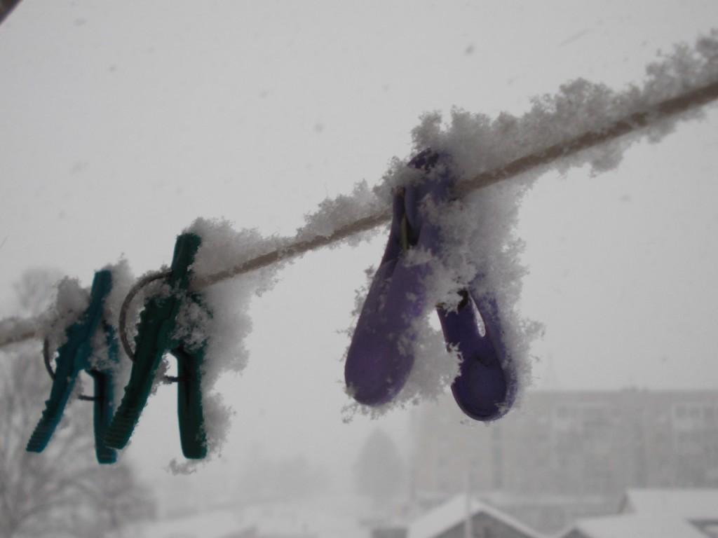 Первый снег всегда в радость..