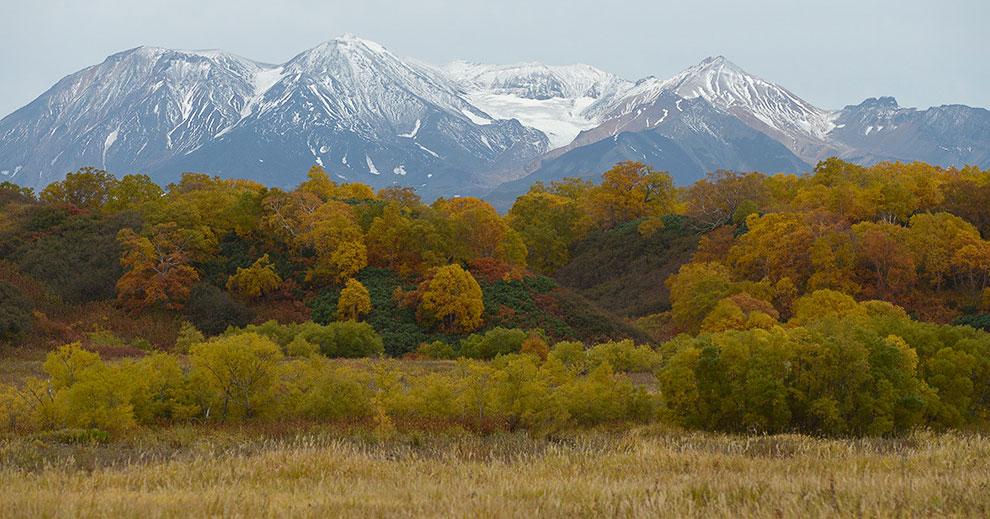 Золотая осень на Камчатке