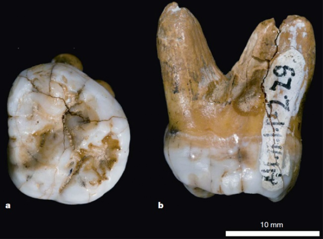 Подборка самых поразительных археологических находок в истории человечества