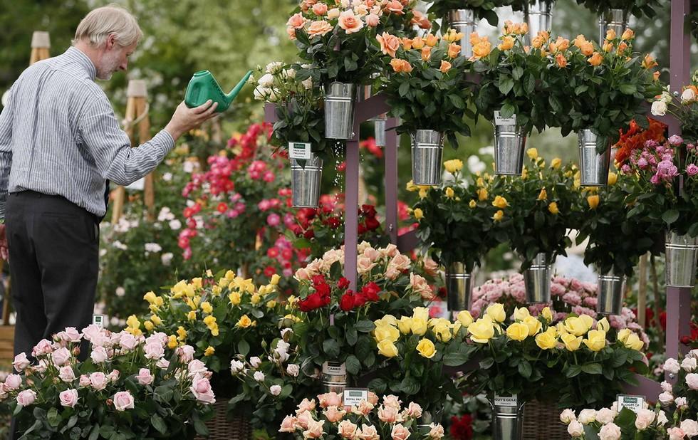 Moscow Flower Show: фестиваль цветов, развлечений и положительных эмоций